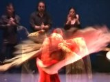 Le festival de Flamenco se prépare à Nîmes
