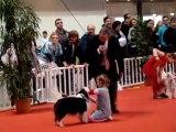 Concours jeunes présentateurs Martigues 2009