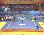 issam barhoumi champion du monde de kung-fu wushu chine 2008