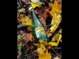 Roysta - Wine Wine Wine