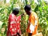 De l'engrais au compte gouttes pour l'agriculture