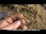 California Gold Mining  Gold Nugget Prospecting