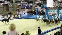 Salon du cheval de Paris 2009 - Horse ball