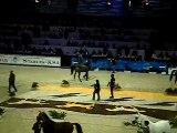 DSSalon du cheval paris , Males Arabes qualif champ duCF6313
