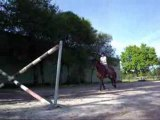 Obstacle croix jolisco