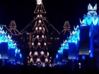 Disney Park Christmas / Noël chez Mickey