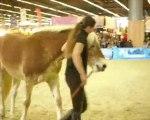Pauline et Naiade salon du cheval 2009. Travail au Sol 2
