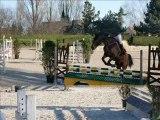 CSO PONEY Partie chevaux 12 2009