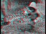 3D Anaglyphe - Victor cherche des cèpes (test 01)