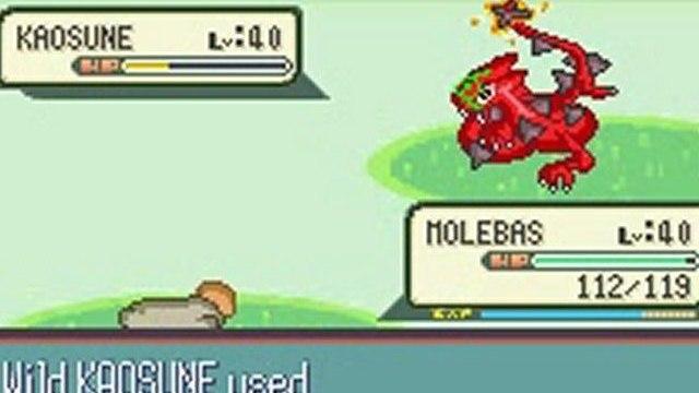 pokemon Quartz version l.v.40 wild pokemon battle!