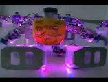 Une danse de robots pour Noël