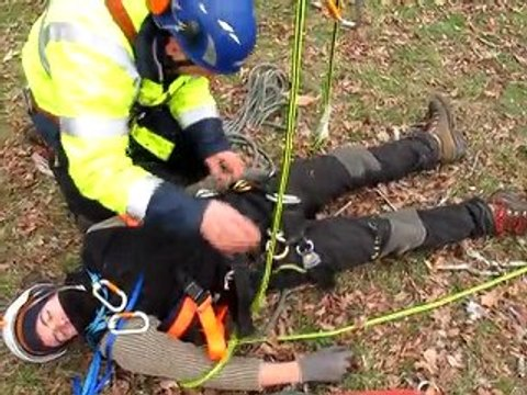 Mise en PLS d'un arboriste-grimpeur
