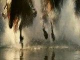 Peinture abstraite au COUTEAU www.marceltronet.com