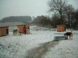 Ambiance Neige a la maison lorsqu'il neige