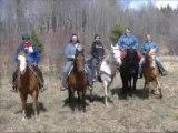 Nos chevaux, notre passion, notre vie!!!