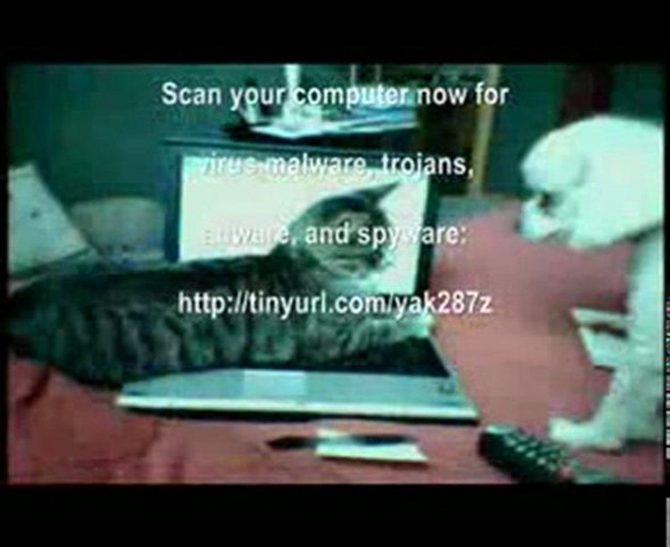 computer virus scan