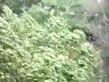 Vidéo sur YouTube de la tempête filmée par un amateur, sam