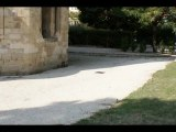 L'abbaye de Saint Ruf en Avignon Vaucluse