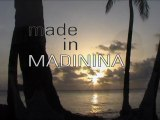 Made in Madinina 1/5 Le mouvement Reggae Dancehall