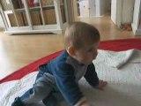 Anaïs marche à 4 pattes et s'assoie !