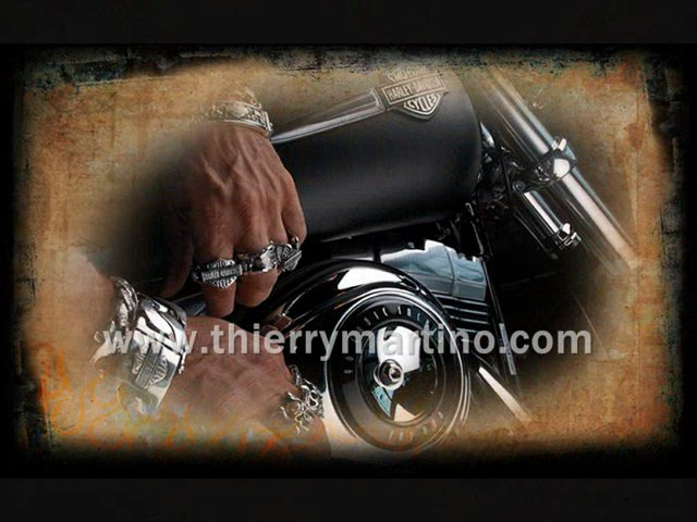 Collection Harley-Davidson®