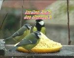 Jardins amis des oiseaux 2