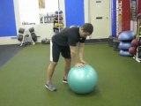 Abs Plank - 1 Arm on Stability Ball