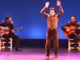 Festival de Flamenco Nîmes: Irresistible Javier Barõn