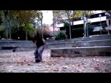 GK_(Parkour Madrid)_Teaser 2010