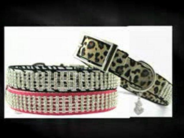 Bling Dog Collars – Furry Fashionista