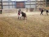 Concours Pony-Games ~ Les Sioux