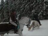 a cheval dans la neige !