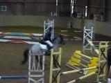 Concours Allonnes - 7.01.2010 - Maëlle et Ohé