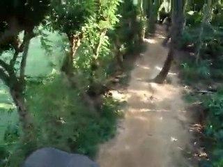 India - Kumili - Elephant Ride