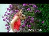 TANE TANE