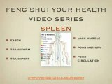 Feng Shui Health Tips for Muscle Tone + Poor Circulation