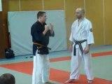 Nihon tai Jitsu - Philippe Galais - Metz - janvier 2010