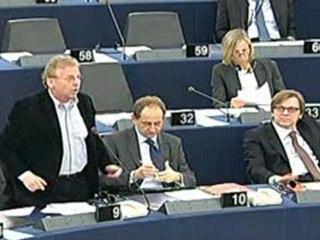 Dany Cohn-Bendit-Investiture de la Commission Barroso II