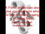 managed forex funds