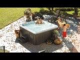 Poway-Hot-Tubs-Discount-Spas-Sundance-Spas- Hotub, Buy-Spa-