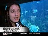 Ateliers maquillage à l'Aquarium du Grand Lyon