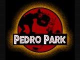 Instru PEDRO - Le retour ce retour s'annonce lourd