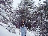 Promenade dans les bois Aussois