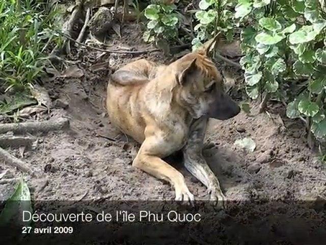 Découverte de l'île de Phu Quoc