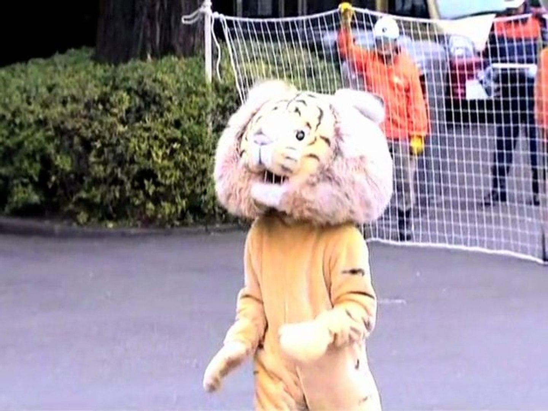 Catch the Lion Man! Catch the Lion Man!