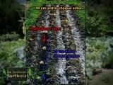 Le Jardinier Sarthois :  La culture de l'ail