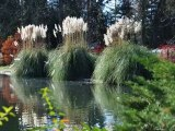 Automne au Jardin Massey (Tarbes, Hautes-Pyrénées)