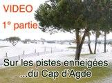CAP D'AGDE - 2010 - SOUS LA NEIGE !  Sur les pistes enneigées du Cap d'Agde ( Herault)