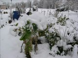 jour de neige à Montlaur
