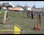 SAINTES AGILITY - GPF - VODKA - 07 03 10